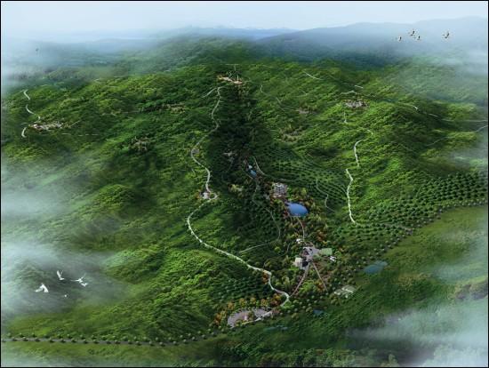森林公园俯视图